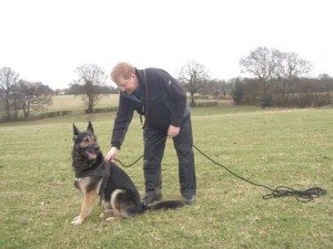 Tracking - Regan's Dog Training