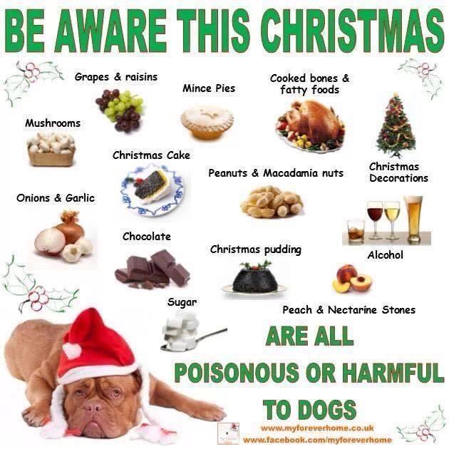 Careful this Christmas